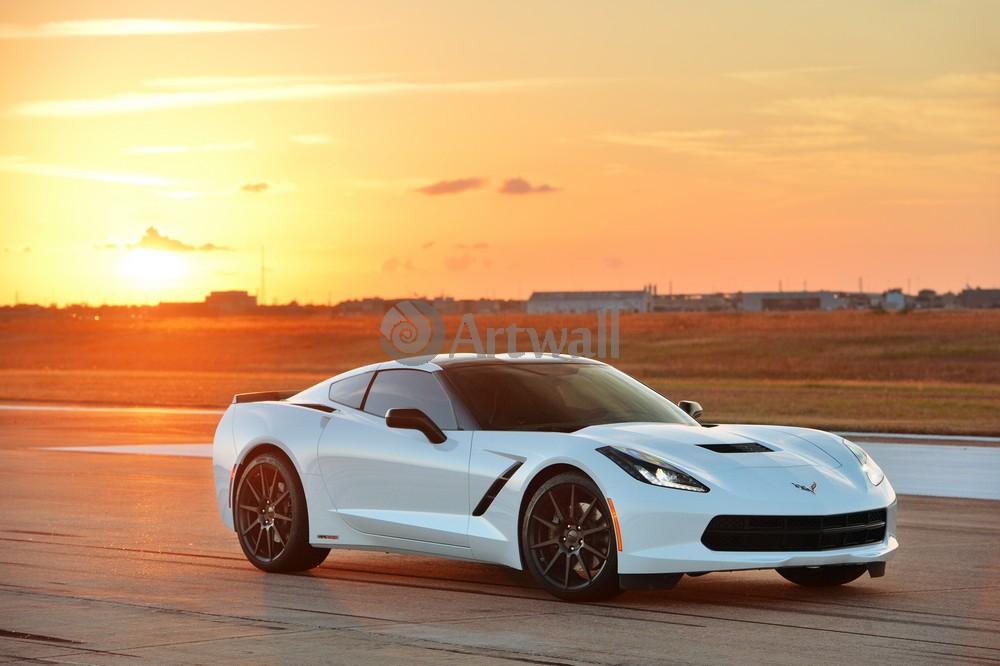 Постер Chevrolet Corvette Stingray, 30x20 см, на бумагеCorvette Stingray<br>Постер на холсте или бумаге. Любого нужного вам размера. В раме или без. Подвес в комплекте. Трехслойная надежная упаковка. Доставим в любую точку России. Вам осталось только повесить картину на стену!<br>