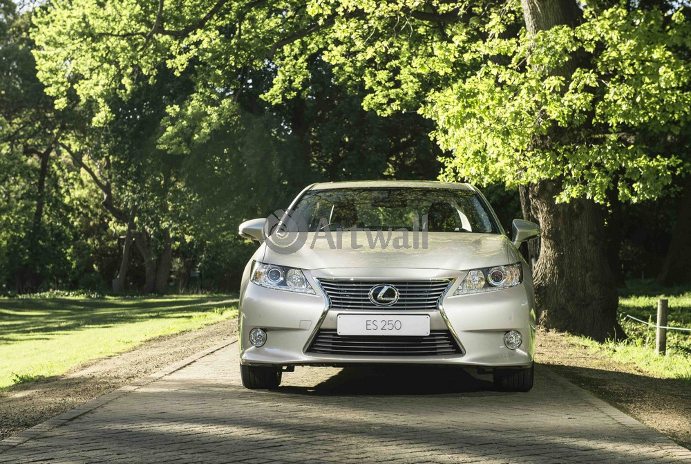 Постер Lexus ES, 30x20 см, на бумагеES<br>Постер на холсте или бумаге. Любого нужного вам размера. В раме или без. Подвес в комплекте. Трехслойная надежная упаковка. Доставим в любую точку России. Вам осталось только повесить картину на стену!<br>