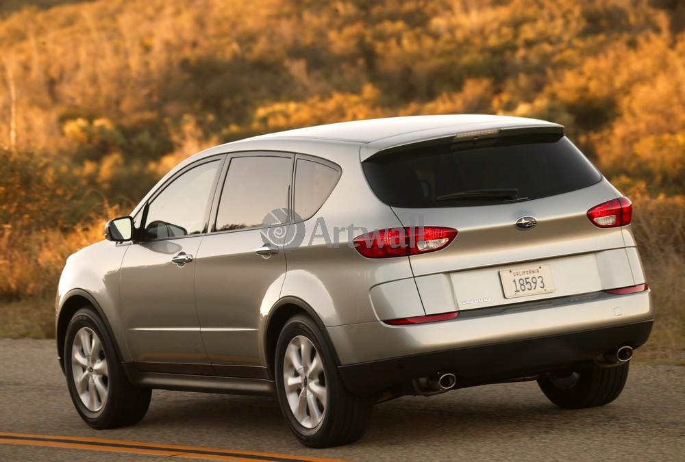 Постер Subaru Tribeca, 30x20 см, на бумагеTribeca<br>Постер на холсте или бумаге. Любого нужного вам размера. В раме или без. Подвес в комплекте. Трехслойная надежная упаковка. Доставим в любую точку России. Вам осталось только повесить картину на стену!<br>