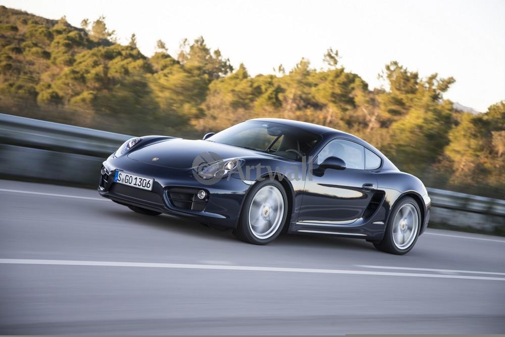 Постер Porsche Cayman, 30x20 см, на бумагеCayman<br>Постер на холсте или бумаге. Любого нужного вам размера. В раме или без. Подвес в комплекте. Трехслойная надежная упаковка. Доставим в любую точку России. Вам осталось только повесить картину на стену!<br>