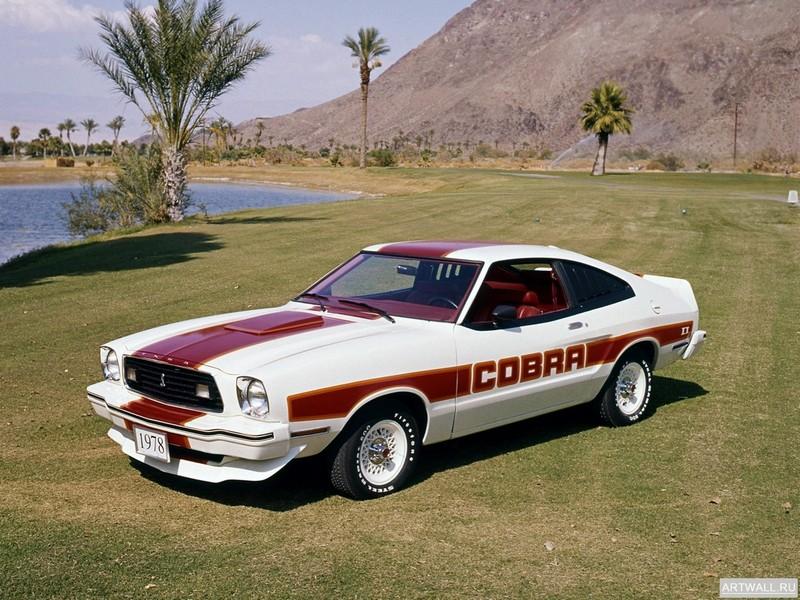 Постер Mustang Cobra II 1978, 27x20 см, на бумагеMustang<br>Постер на холсте или бумаге. Любого нужного вам размера. В раме или без. Подвес в комплекте. Трехслойная надежная упаковка. Доставим в любую точку России. Вам осталось только повесить картину на стену!<br>