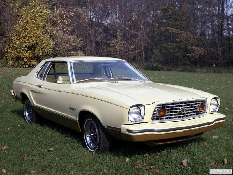 Постер Mustang Coupe 1974-76, 27x20 см, на бумагеMustang<br>Постер на холсте или бумаге. Любого нужного вам размера. В раме или без. Подвес в комплекте. Трехслойная надежная упаковка. Доставим в любую точку России. Вам осталось только повесить картину на стену!<br>