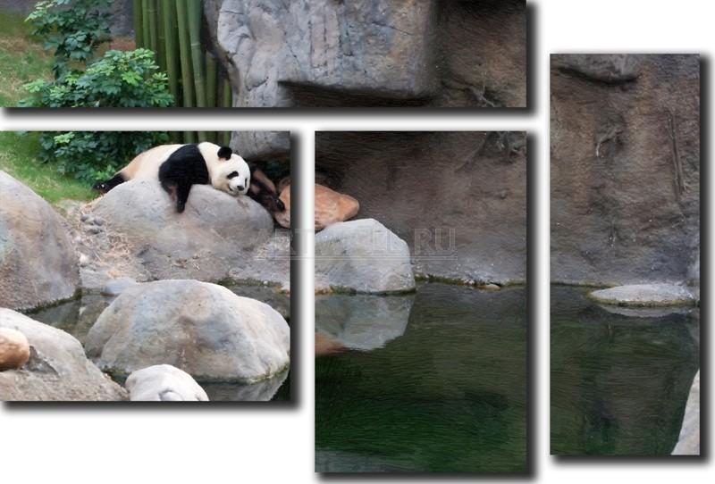 Модульная картина «Панда»Животные и птицы<br>Модульная картина на натуральном холсте и деревянном подрамнике. Подвес в комплекте. Трехслойная надежная упаковка. Доставим в любую точку России. Вам осталось только повесить картину на стену!<br>