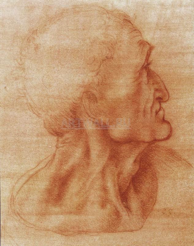 Да Винчи Леонардо, картина Репродукция 29206Да Винчи Леонардо<br>Репродукция на холсте или бумаге. Любого нужного вам размера. В раме или без. Подвес в комплекте. Трехслойная надежная упаковка. Доставим в любую точку России. Вам осталось только повесить картину на стену!<br>