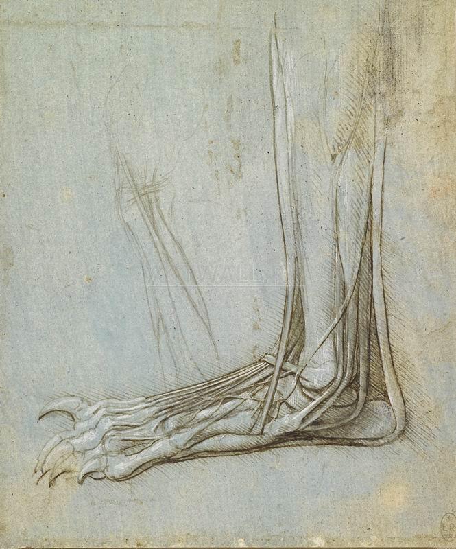 Да Винчи Леонардо, картина Репродукция 29228Да Винчи Леонардо<br>Репродукция на холсте или бумаге. Любого нужного вам размера. В раме или без. Подвес в комплекте. Трехслойная надежная упаковка. Доставим в любую точку России. Вам осталось только повесить картину на стену!<br>