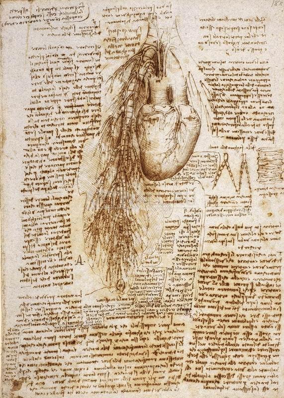 Да Винчи Леонардо, картина Репродукция 29234Да Винчи Леонардо<br>Репродукция на холсте или бумаге. Любого нужного вам размера. В раме или без. Подвес в комплекте. Трехслойная надежная упаковка. Доставим в любую точку России. Вам осталось только повесить картину на стену!<br>