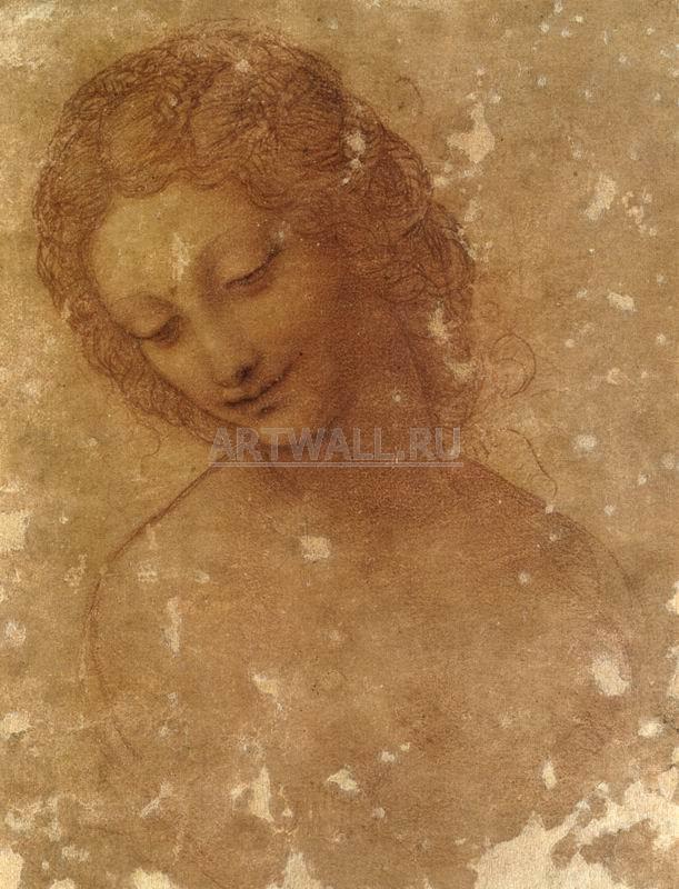 Да Винчи Леонардо, картина Голова Леды эскизДа Винчи Леонардо<br>Репродукция на холсте или бумаге. Любого нужного вам размера. В раме или без. Подвес в комплекте. Трехслойная надежная упаковка. Доставим в любую точку России. Вам осталось только повесить картину на стену!<br>