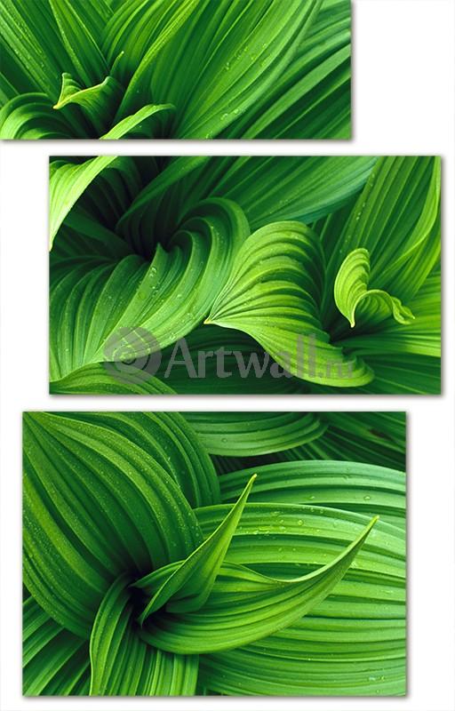 Модульная картина «Геометрия листьев»Цветы<br>Модульная картина на натуральном холсте и деревянном подрамнике. Подвес в комплекте. Трехслойная надежная упаковка. Доставим в любую точку России. Вам осталось только повесить картину на стену!<br>