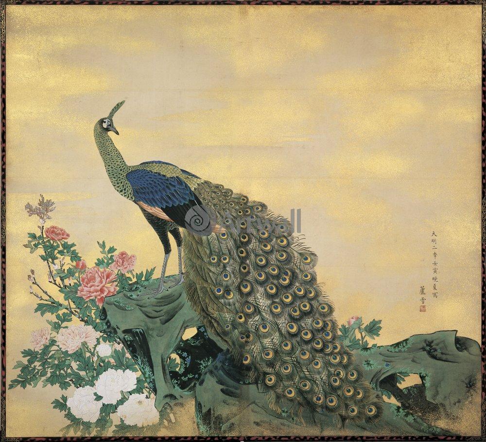 Японская гравюра Растения, птицы и животные, Гравюра 36272Растения, птицы и животные<br>Репродукция на холсте или бумаге. Любого нужного вам размера. В раме или без. Подвес в комплекте. Трехслойная надежная упаковка. Доставим в любую точку России. Вам осталось только повесить картину на стену!<br>