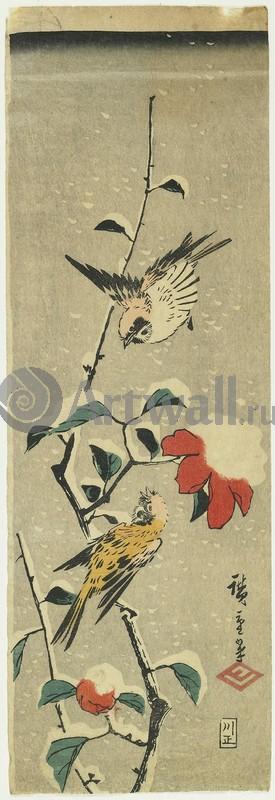Японская гравюра Растения, птицы и животные, Гравюра 36276Растения, птицы и животные<br>Репродукция на холсте или бумаге. Любого нужного вам размера. В раме или без. Подвес в комплекте. Трехслойная надежная упаковка. Доставим в любую точку России. Вам осталось только повесить картину на стену!<br>