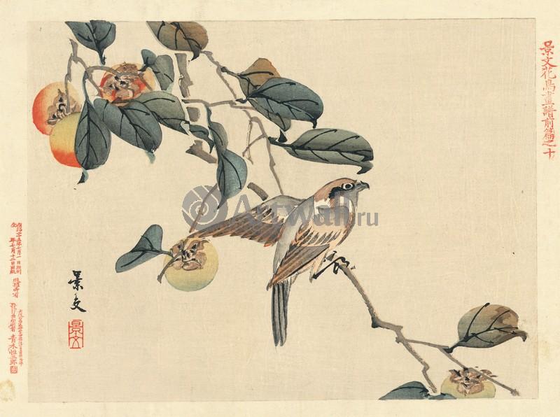 Японская гравюра Растения, птицы и животные, Гравюра 36278Растения, птицы и животные<br>Репродукция на холсте или бумаге. Любого нужного вам размера. В раме или без. Подвес в комплекте. Трехслойная надежная упаковка. Доставим в любую точку России. Вам осталось только повесить картину на стену!<br>