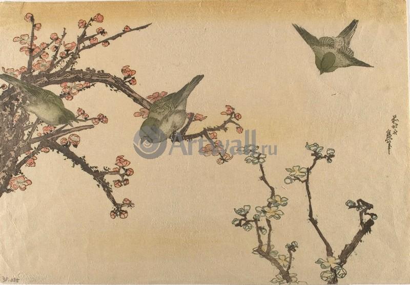 Японская гравюра Растения, птицы и животные, Гравюра 36281Растения, птицы и животные<br>Репродукция на холсте или бумаге. Любого нужного вам размера. В раме или без. Подвес в комплекте. Трехслойная надежная упаковка. Доставим в любую точку России. Вам осталось только повесить картину на стену!<br>