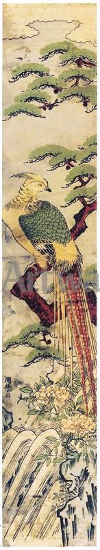 Японская гравюра Растения, птицы и животные, Павлин, предвестник долголетия и счастья, на сосновой ветви над водопадомРастения, птицы и животные<br>Репродукция на холсте или бумаге. Любого нужного вам размера. В раме или без. Подвес в комплекте. Трехслойная надежная упаковка. Доставим в любую точку России. Вам осталось только повесить картину на стену!<br>