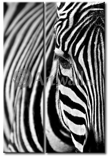 Модульная картина «Голова зебры»Животные и птицы<br>Модульная картина на натуральном холсте и деревянном подрамнике. Подвес в комплекте. Трехслойная надежная упаковка. Доставим в любую точку России. Вам осталось только повесить картину на стену!<br>