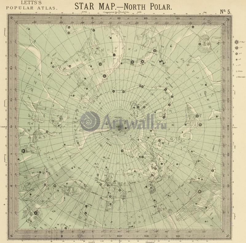 Постер Старинные карты Звездная карта - Северный полюсСтаринные карты<br>Постер на холсте или бумаге. Любого нужного вам размера. В раме или без. Подвес в комплекте. Трехслойная надежная упаковка. Доставим в любую точку России. Вам осталось только повесить картину на стену!<br>