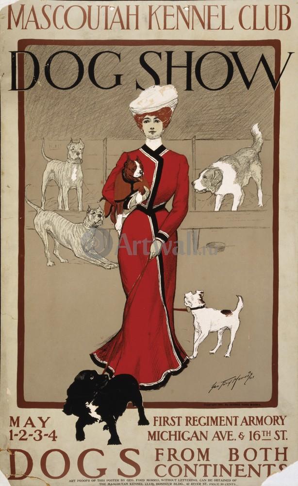 Плакат Животные