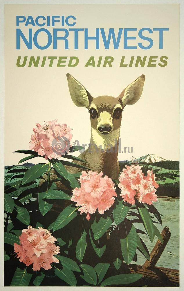 Pacific Northwest, United Air Lines, 20x32 см, на бумагеТуризм<br>Постер на холсте или бумаге. Любого нужного вам размера. В раме или без. Подвес в комплекте. Трехслойная надежная упаковка. Доставим в любую точку России. Вам осталось только повесить картину на стену!<br>