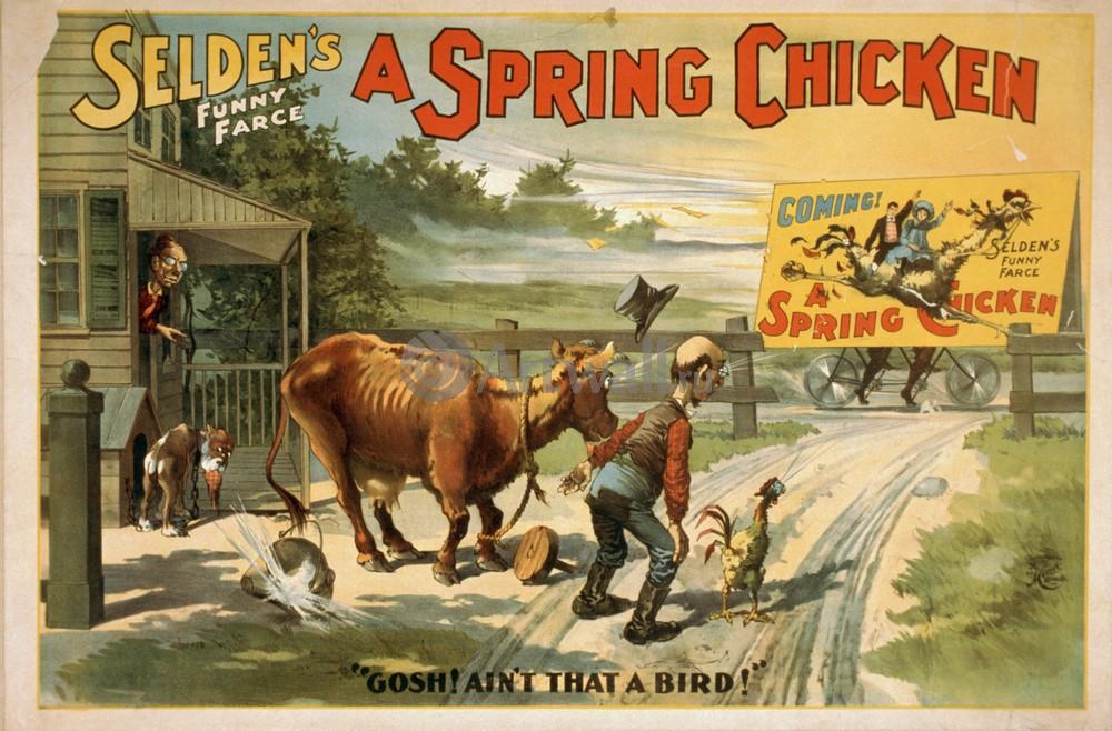 Плакат Плакат 20 века Seldens Funny Farce, A Spring Chicken, 30x20 см, на бумагеКино<br>Постер на холсте или бумаге. Любого нужного вам размера. В раме или без. Подвес в комплекте. Трехслойная надежная упаковка. Доставим в любую точку России. Вам осталось только повесить картину на стену!<br>