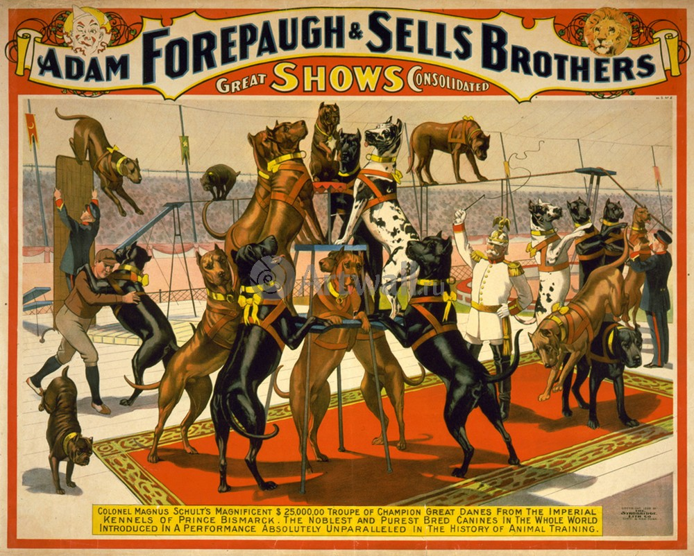 Плакат Плакат 20 века The Adam Forepaugh &amp; Sells Brothers, Americas Greatest Shows Consolidated (2), 25x20 см, на бумагеЦирк<br>Постер на холсте или бумаге. Любого нужного вам размера. В раме или без. Подвес в комплекте. Трехслойная надежная упаковка. Доставим в любую точку России. Вам осталось только повесить картину на стену!<br>