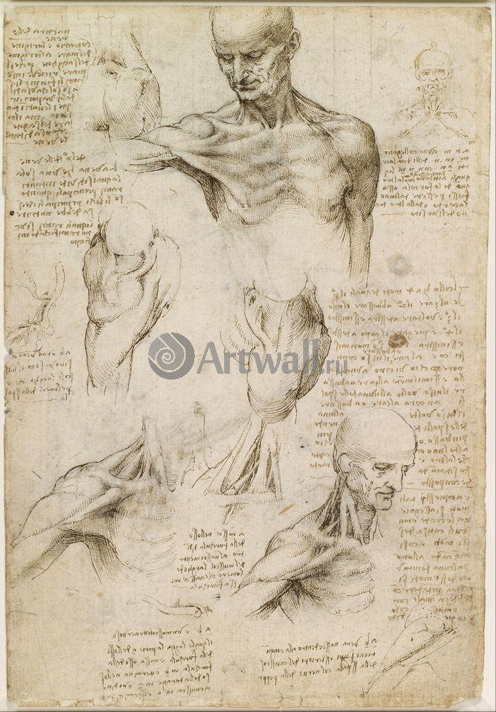 Да Винчи Леонардо, картина Репродукция 40621Да Винчи Леонардо<br>Репродукция на холсте или бумаге. Любого нужного вам размера. В раме или без. Подвес в комплекте. Трехслойная надежная упаковка. Доставим в любую точку России. Вам осталось только повесить картину на стену!<br>