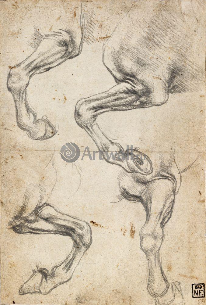 Да Винчи Леонардо, картина Репродукция 40624Да Винчи Леонардо<br>Репродукция на холсте или бумаге. Любого нужного вам размера. В раме или без. Подвес в комплекте. Трехслойная надежная упаковка. Доставим в любую точку России. Вам осталось только повесить картину на стену!<br>