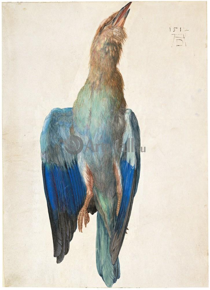 Дюрер Альбрехт, картина Мертвая синяя птицаДюрер Альбрехт<br>Репродукция на холсте или бумаге. Любого нужного вам размера. В раме или без. Подвес в комплекте. Трехслойная надежная упаковка. Доставим в любую точку России. Вам осталось только повесить картину на стену!<br>