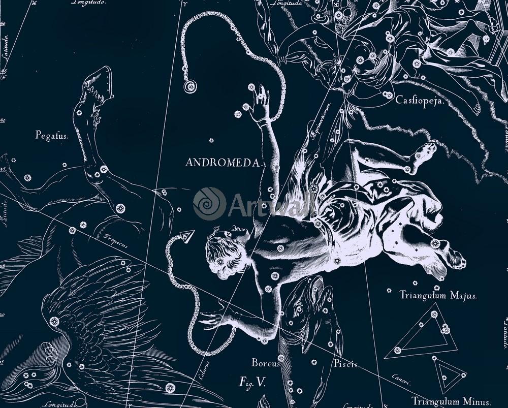 Постер Карты созвездий Andromeda - АндромедаКарты созвездий<br>Постер на холсте или бумаге. Любого нужного вам размера. В раме или без. Подвес в комплекте. Трехслойная надежная упаковка. Доставим в любую точку России. Вам осталось только повесить картину на стену!<br>