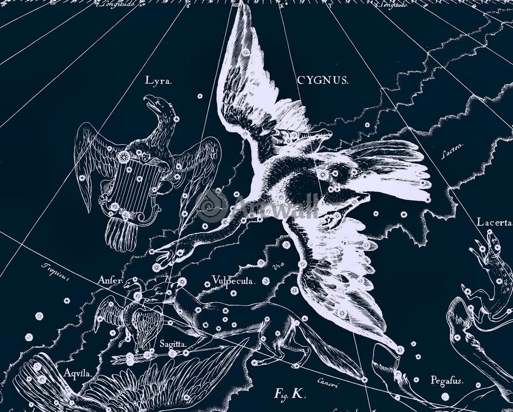 Постер Карты созвездий Cygnus - ЛебедьКарты созвездий<br>Постер на холсте или бумаге. Любого нужного вам размера. В раме или без. Подвес в комплекте. Трехслойная надежная упаковка. Доставим в любую точку России. Вам осталось только повесить картину на стену!<br>