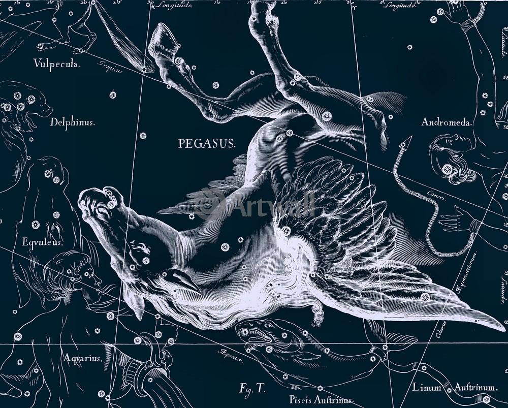 Постер Карты созвездий Pegasus - ПегасКарты созвездий<br>Постер на холсте или бумаге. Любого нужного вам размера. В раме или без. Подвес в комплекте. Трехслойная надежная упаковка. Доставим в любую точку России. Вам осталось только повесить картину на стену!<br>