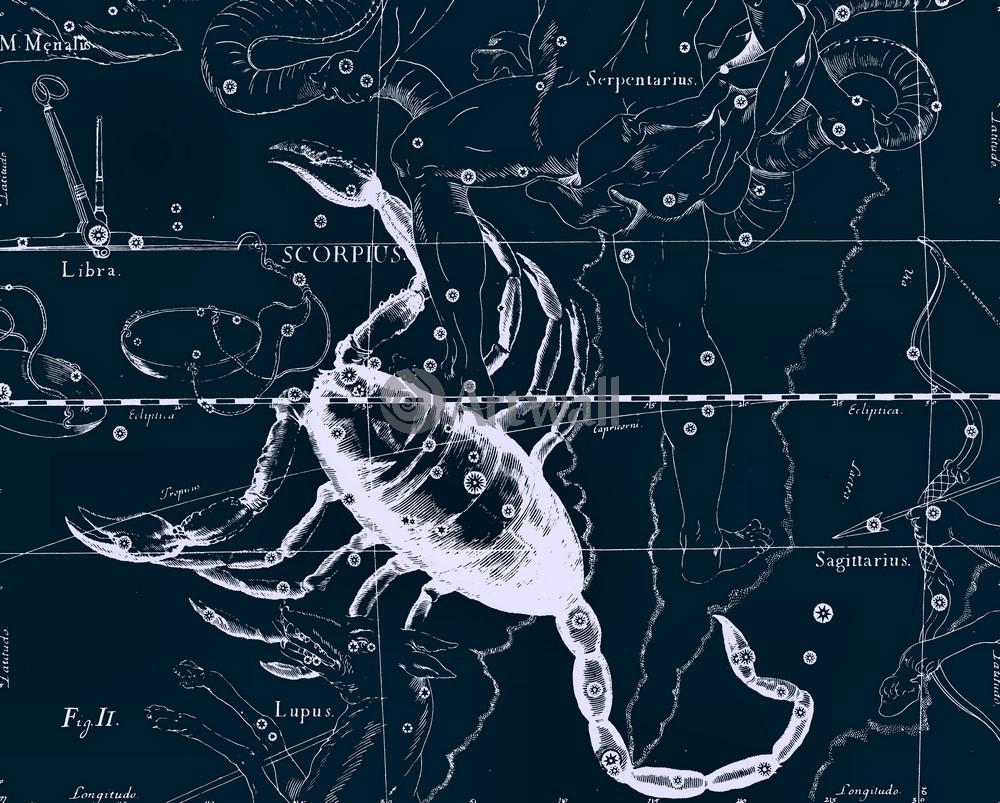Постер Карты созвездий Scorpius - СкорпионКарты созвездий<br>Постер на холсте или бумаге. Любого нужного вам размера. В раме или без. Подвес в комплекте. Трехслойная надежная упаковка. Доставим в любую точку России. Вам осталось только повесить картину на стену!<br>