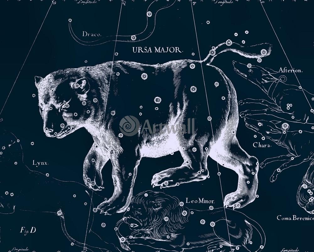Постер Карты созвездий Ursa Major - Большая МедведицаКарты созвездий<br>Постер на холсте или бумаге. Любого нужного вам размера. В раме или без. Подвес в комплекте. Трехслойная надежная упаковка. Доставим в любую точку России. Вам осталось только повесить картину на стену!<br>