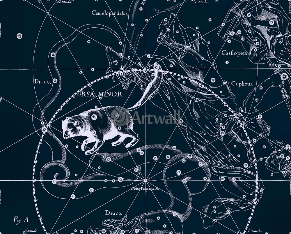 Постер Карты созвездий Ursa Minor - Малая МедведицаКарты созвездий<br>Постер на холсте или бумаге. Любого нужного вам размера. В раме или без. Подвес в комплекте. Трехслойная надежная упаковка. Доставим в любую точку России. Вам осталось только повесить картину на стену!<br>
