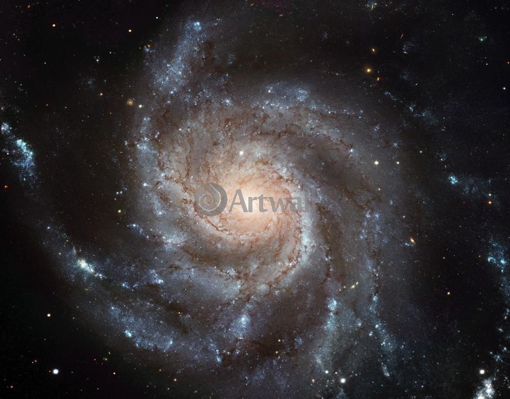 Постер Фотографии галактики NASA Постер 44584Фотографии галактики NASA<br>Постер на холсте или бумаге. Любого нужного вам размера. В раме или без. Подвес в комплекте. Трехслойная надежная упаковка. Доставим в любую точку России. Вам осталось только повесить картину на стену!<br>