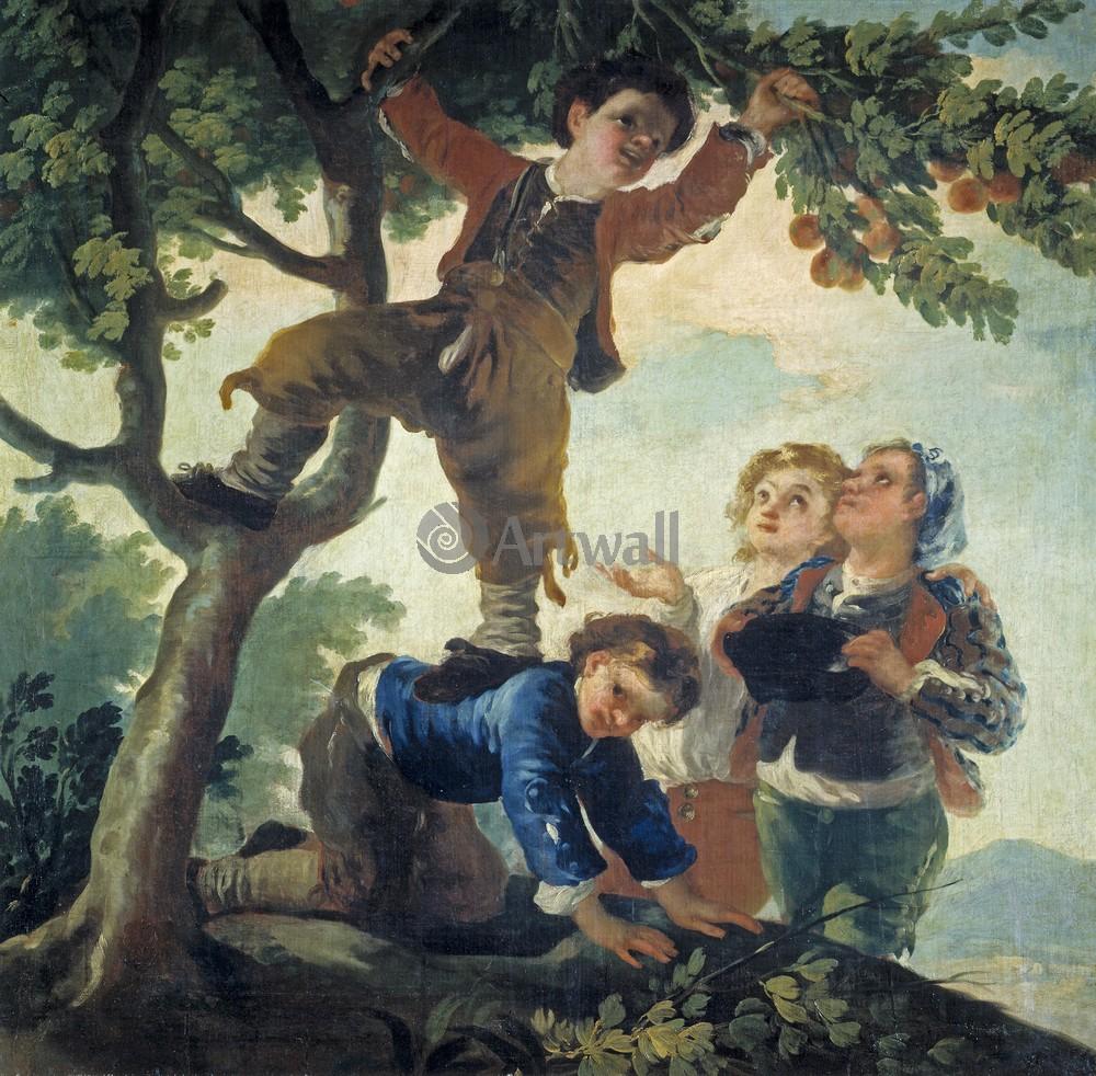Гойа Франциско, картина Мальчики, собирающие фруктыГойа Франциско<br>Репродукция на холсте или бумаге. Любого нужного вам размера. В раме или без. Подвес в комплекте. Трехслойная надежная упаковка. Доставим в любую точку России. Вам осталось только повесить картину на стену!<br>
