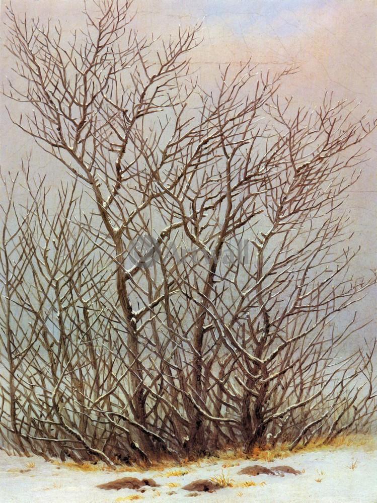 Каспар Фридрих, картина Деревья и кустарники на снегуКаспар Фридрих<br>Репродукция на холсте или бумаге. Любого нужного вам размера. В раме или без. Подвес в комплекте. Трехслойная надежная упаковка. Доставим в любую точку России. Вам осталось только повесить картину на стену!<br>