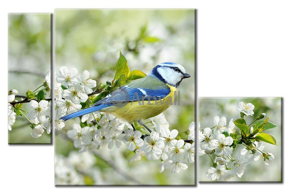 Модульная картина «Синица на ветке»Животные и птицы<br>Модульная картина на натуральном холсте и деревянном подрамнике. Подвес в комплекте. Трехслойная надежная упаковка. Доставим в любую точку России. Вам осталось только повесить картину на стену!<br>