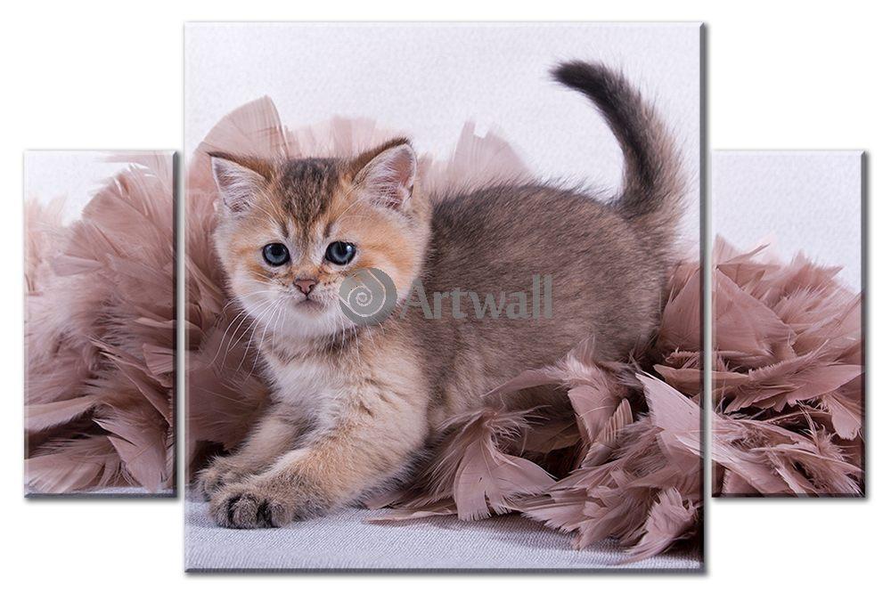 Модульная картина «Несмышленый котенок»Животные и птицы<br>Модульная картина на натуральном холсте и деревянном подрамнике. Подвес в комплекте. Трехслойная надежная упаковка. Доставим в любую точку России. Вам осталось только повесить картину на стену!<br>