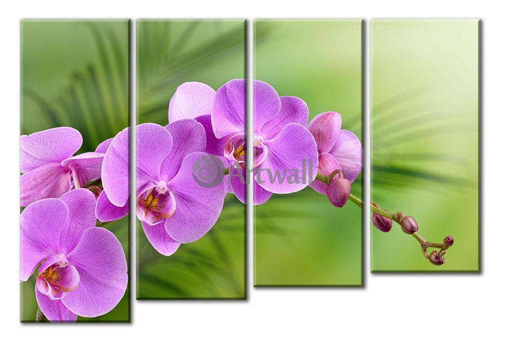 Модульная картина «Ветка орхидеи»Цветы<br>Модульная картина на натуральном холсте и деревянном подрамнике. Подвес в комплекте. Трехслойная надежная упаковка. Доставим в любую точку России. Вам осталось только повесить картину на стену!<br>