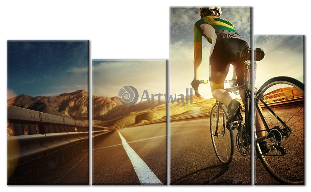 Модульная картина «Велосипедный спорт»Спорт<br>Модульная картина на натуральном холсте и деревянном подрамнике. Подвес в комплекте. Трехслойная надежная упаковка. Доставим в любую точку России. Вам осталось только повесить картину на стену!<br>