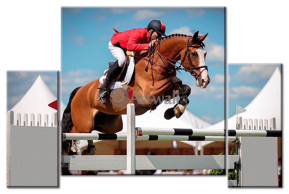 Модульная картина «Конный спорт»Спорт<br>Модульная картина на натуральном холсте и деревянном подрамнике. Подвес в комплекте. Трехслойная надежная упаковка. Доставим в любую точку России. Вам осталось только повесить картину на стену!<br>