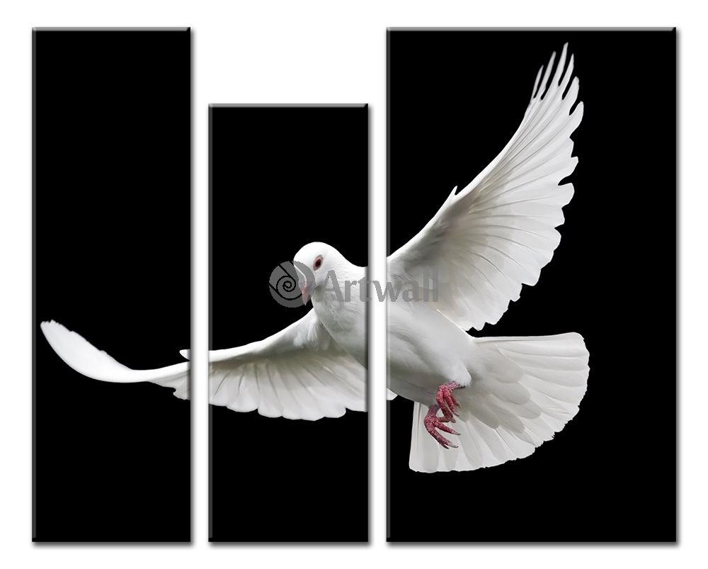 Модульная картина «Белый голубь»Животные и птицы<br>Модульная картина на натуральном холсте и деревянном подрамнике. Подвес в комплекте. Трехслойная надежная упаковка. Доставим в любую точку России. Вам осталось только повесить картину на стену!<br>