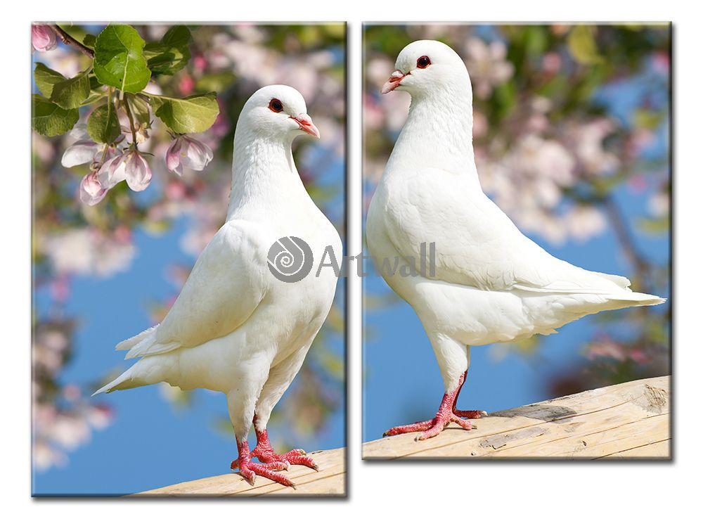 Модульная картина «Голуби»Животные и птицы<br>Модульная картина на натуральном холсте и деревянном подрамнике. Подвес в комплекте. Трехслойная надежная упаковка. Доставим в любую точку России. Вам осталось только повесить картину на стену!<br>