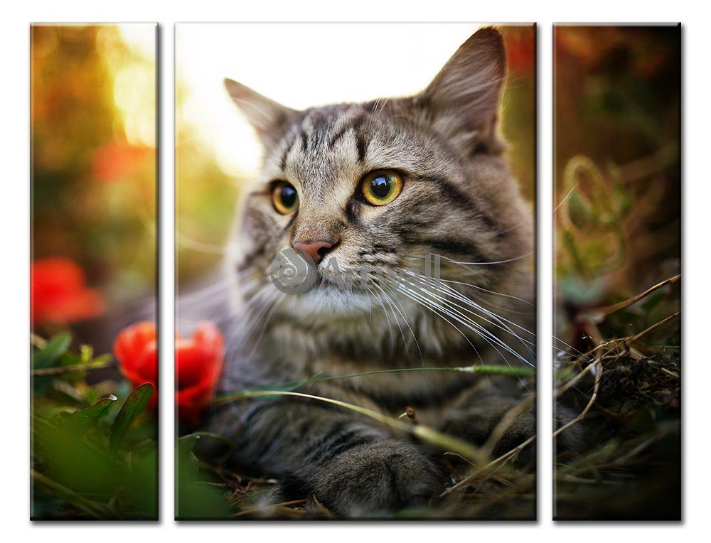 Модульная картина «Кошка»Животные и птицы<br>Модульная картина на натуральном холсте и деревянном подрамнике. Подвес в комплекте. Трехслойная надежная упаковка. Доставим в любую точку России. Вам осталось только повесить картину на стену!<br>