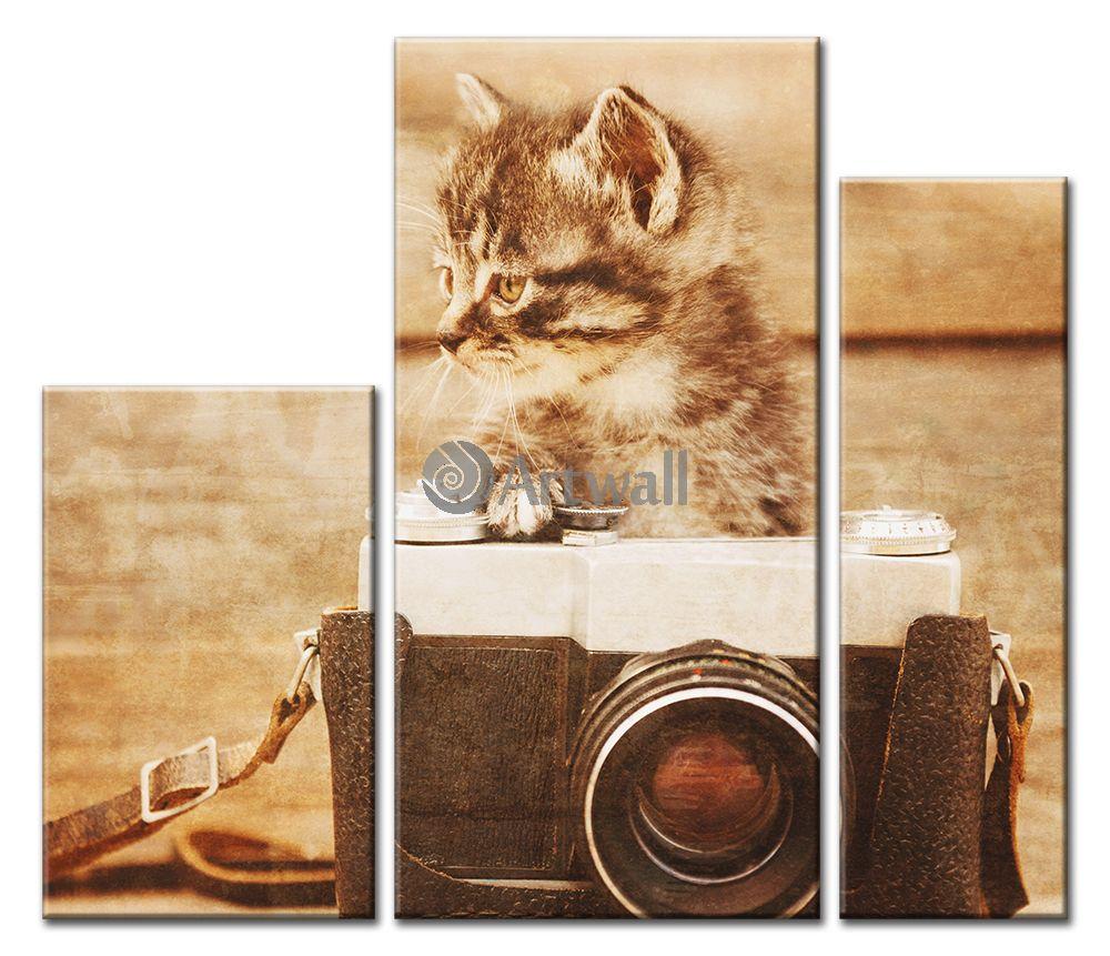 Модульная картина «Котенок»Животные и птицы<br>Модульная картина на натуральном холсте и деревянном подрамнике. Подвес в комплекте. Трехслойная надежная упаковка. Доставим в любую точку России. Вам осталось только повесить картину на стену!<br>