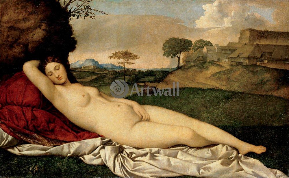 """Джорджоне, картина """"Спящая Венера"""" от Artwall"""