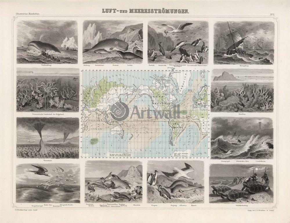 Постер Старинные карты Тихий океанСтаринные карты<br>Постер на холсте или бумаге. Любого нужного вам размера. В раме или без. Подвес в комплекте. Трехслойная надежная упаковка. Доставим в любую точку России. Вам осталось только повесить картину на стену!<br>