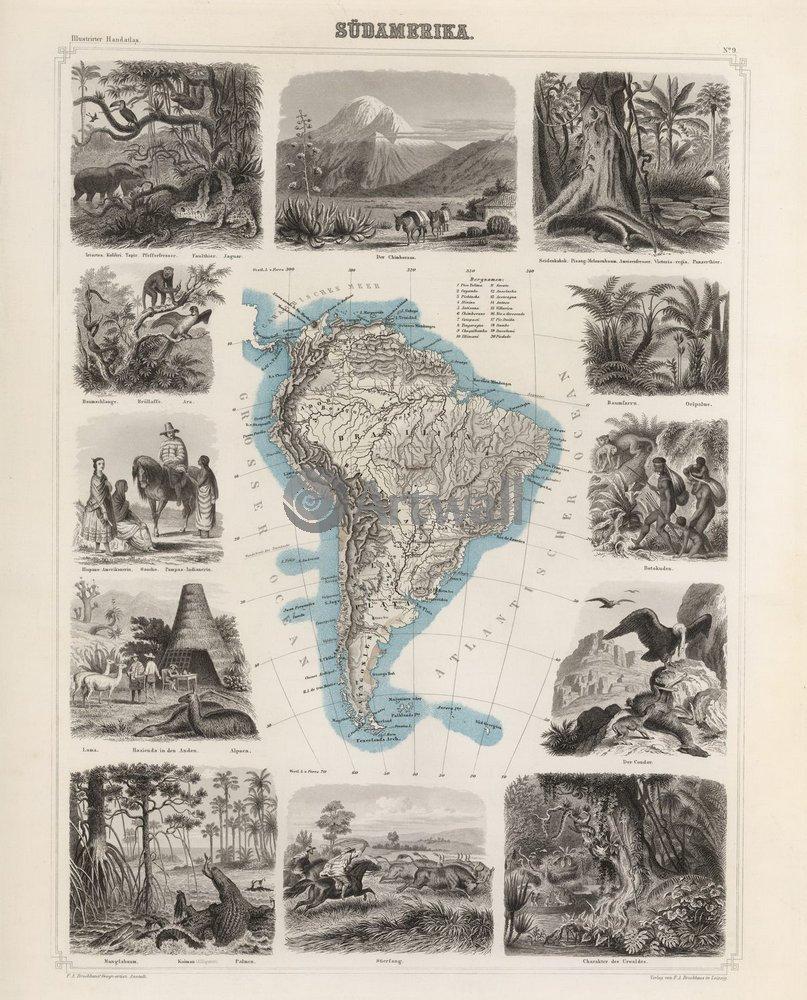 Старинные карты, картина Южная АмерикаСтаринные карты<br>Репродукция на холсте или бумаге. Любого нужного вам размера. В раме или без. Подвес в комплекте. Трехслойная надежная упаковка. Доставим в любую точку России. Вам осталось только повесить картину на стену!<br>