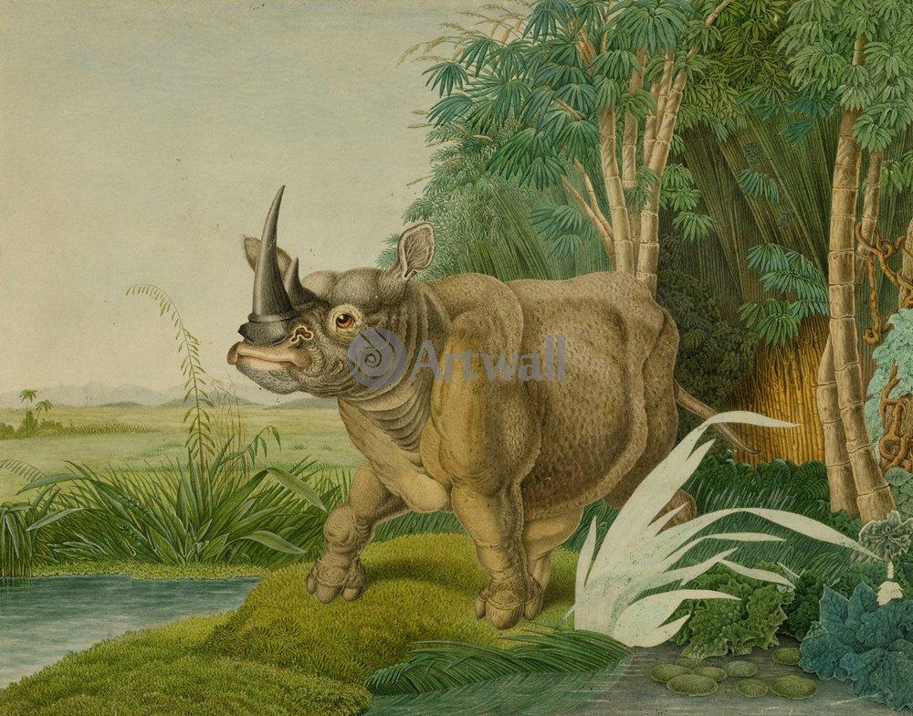 Животные, картина Алоиз Зотл «Белый носорог»Животные<br>Репродукция на холсте или бумаге. Любого нужного вам размера. В раме или без. Подвес в комплекте. Трехслойная надежная упаковка. Доставим в любую точку России. Вам осталось только повесить картину на стену!<br>