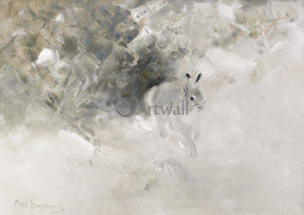 Животные, картина Моссе Стопендал «Заяц»Животные<br>Репродукция на холсте или бумаге. Любого нужного вам размера. В раме или без. Подвес в комплекте. Трехслойная надежная упаковка. Доставим в любую точку России. Вам осталось только повесить картину на стену!<br>