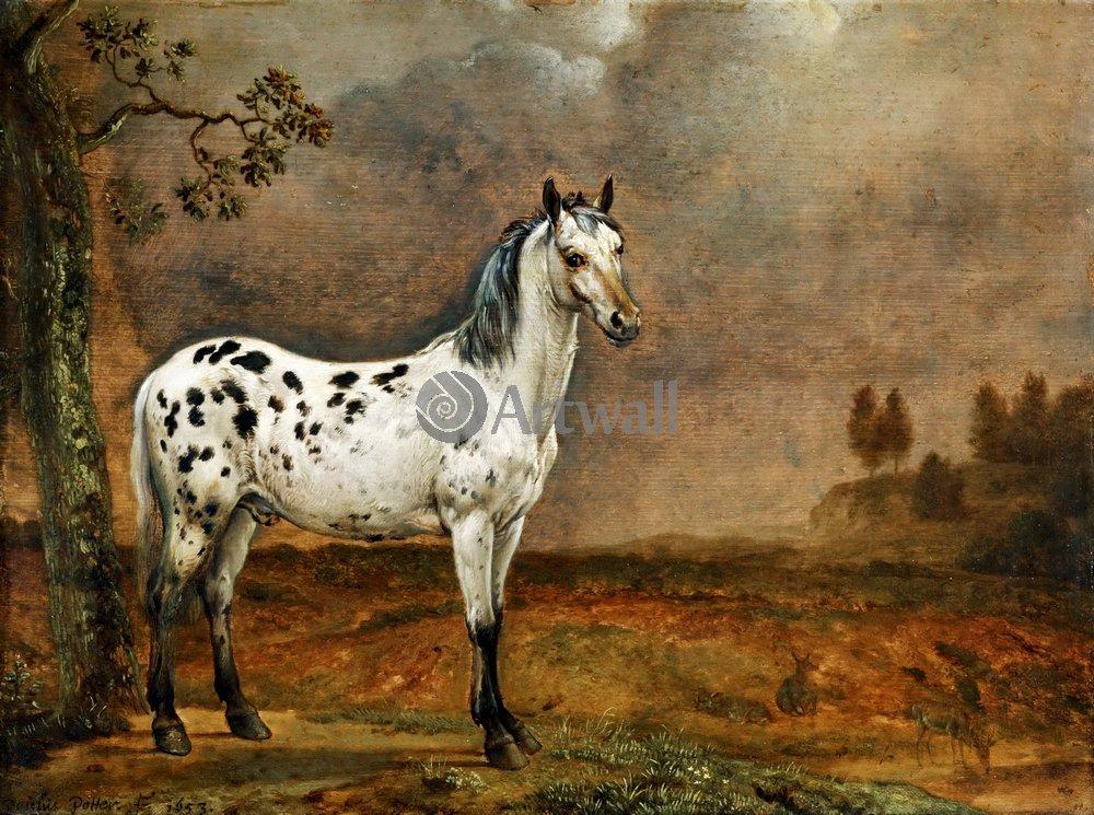 Животные, картина Паулус Поттер «Лошадь»Животные<br>Репродукция на холсте или бумаге. Любого нужного вам размера. В раме или без. Подвес в комплекте. Трехслойная надежная упаковка. Доставим в любую точку России. Вам осталось только повесить картину на стену!<br>